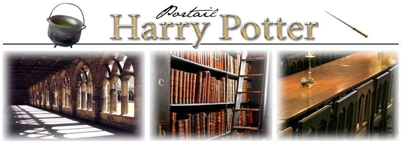 Banner of the Harry Potter French portal on Wikipedia.
