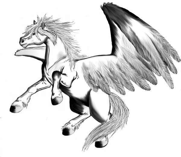 Pegasus roaring, digital drawing.